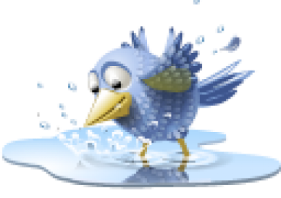 cropped-pool-bird-icon1.png