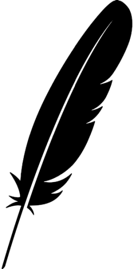 feather-2781343_result